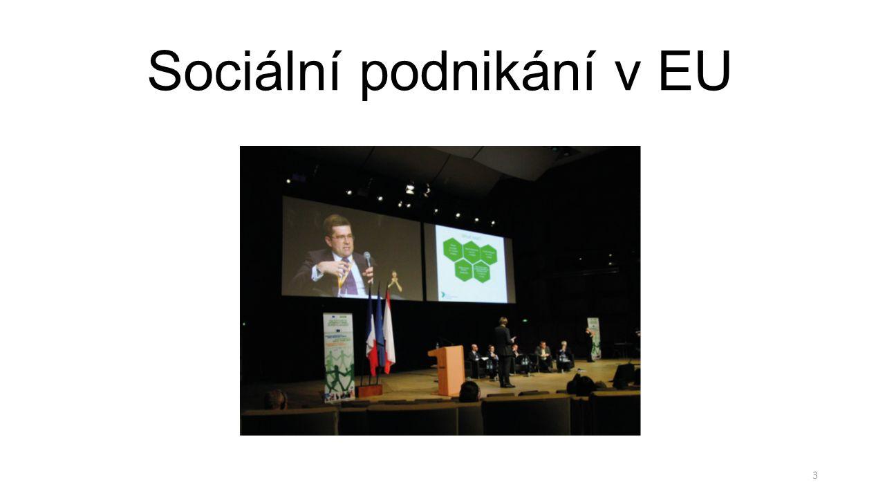 Sociální podnikání v EU 3