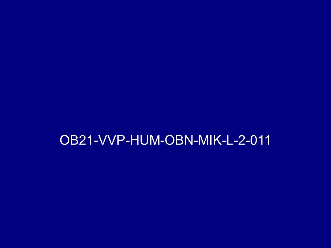 OB21-VVP-HUM-OBN-MIK-L-2-011
