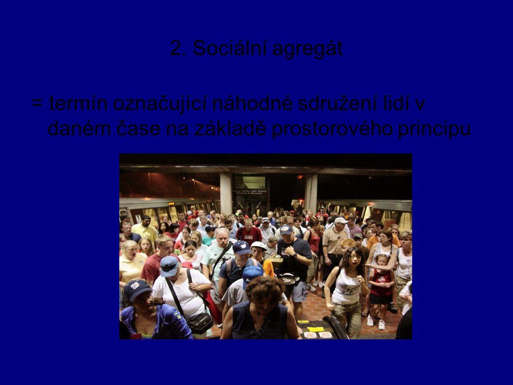 2. Sociální agregát = termín označující náhodné sdružení lidí v daném čase na základě prostorového principu