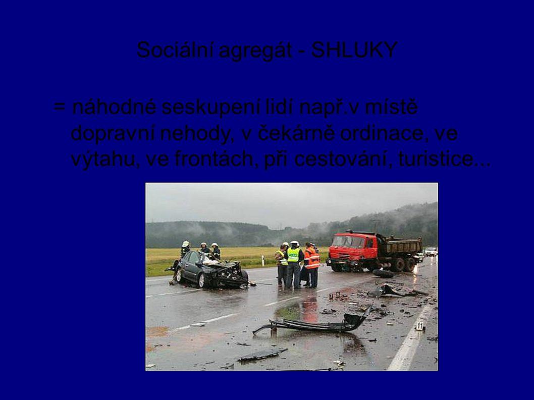 Sociální agregát - SHLUKY = náhodné seskupení lidí např.v místě dopravní nehody, v čekárně ordinace, ve výtahu, ve frontách, při cestování, turistice.
