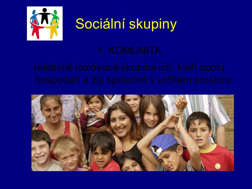 Sociální skupiny 1. KOMUNITA relativně izolovaná skupina lidí, kteří spolu hospodaří a žijí společně v určitém prostoru