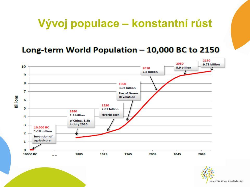 Vývoj populace – konstantní růst