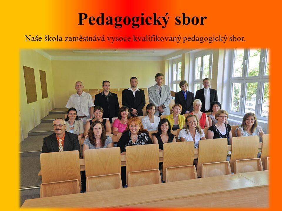 Pedagogický sbor Naše škola zaměstnává vysoce kvalifikovaný pedagogický sbor.