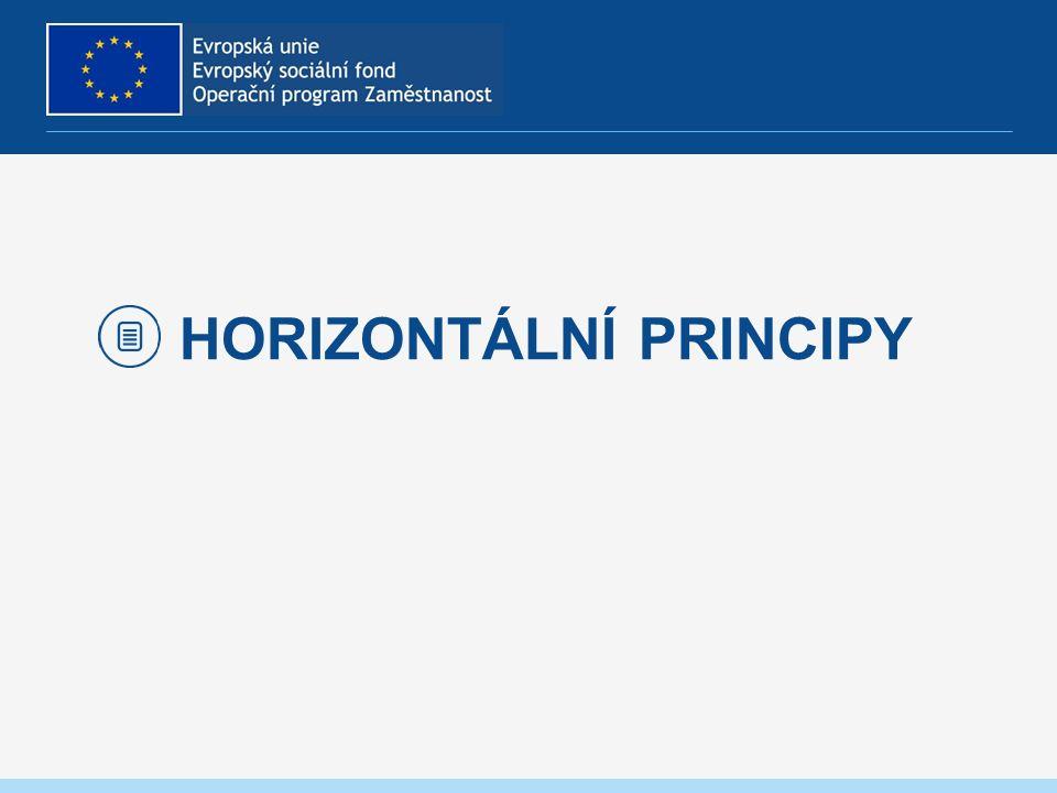 HORIZONTÁLNÍ PRINCIPY