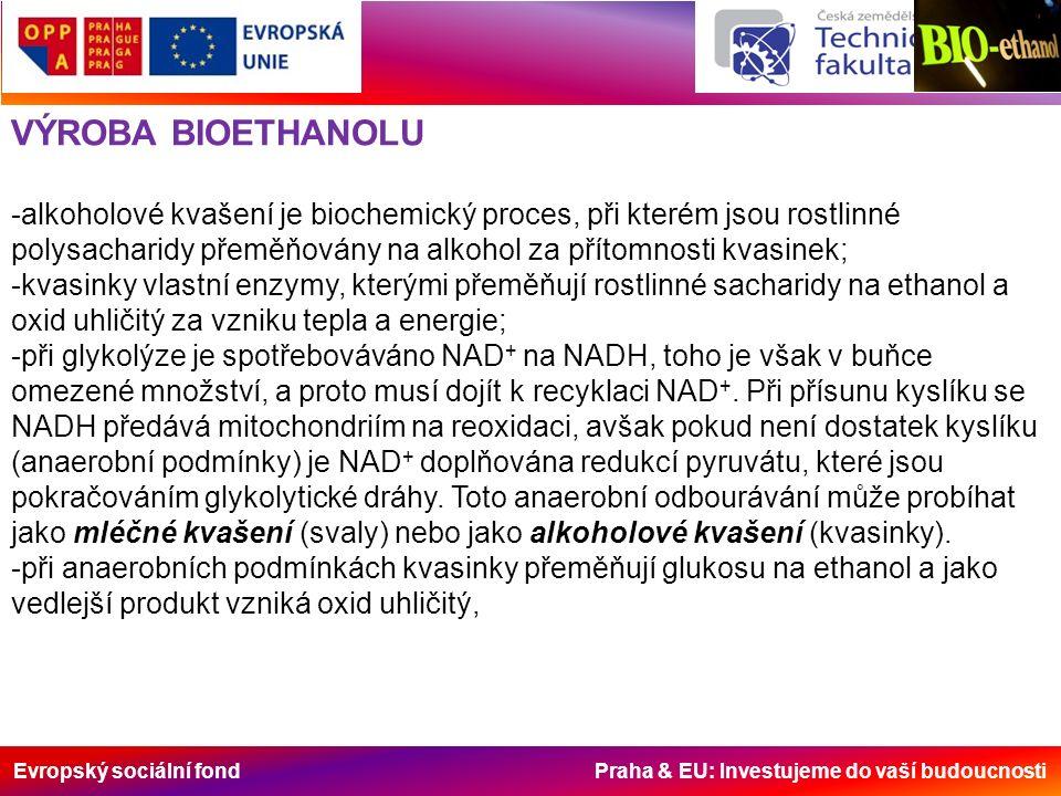 Evropský sociální fond Praha & EU: Investujeme do vaší budoucnosti VÝROBA BIOETHANOLU -alkoholové kvašení je biochemický proces, při kterém jsou rostlinné polysacharidy přeměňovány na alkohol za přítomnosti kvasinek; -kvasinky vlastní enzymy, kterými přeměňují rostlinné sacharidy na ethanol a oxid uhličitý za vzniku tepla a energie; -při glykolýze je spotřebováváno NAD + na NADH, toho je však v buňce omezené množství, a proto musí dojít k recyklaci NAD +.