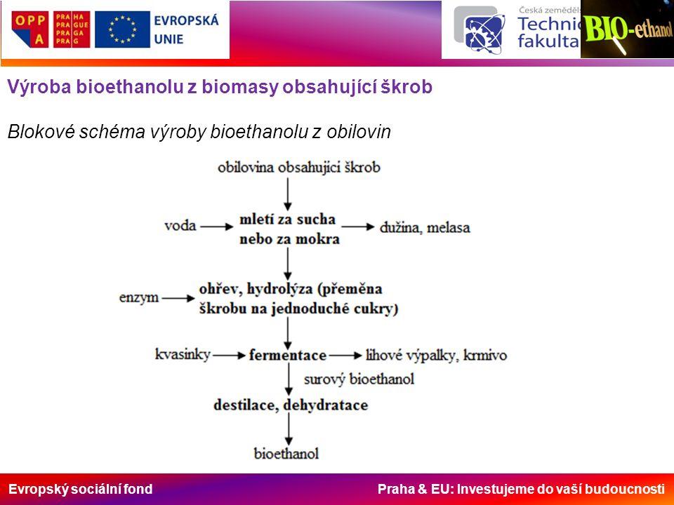 Evropský sociální fond Praha & EU: Investujeme do vaší budoucnosti Výroba bioethanolu z biomasy obsahující škrob -přestože je nejvýnosnější plodinou k výrobě kvasného lihu v našich podmínkách cukrovka, dává se přednost obilovinám; -důvody pro preferenci obilovin k získávání bioethanolu jsou především relativní agrotechnická nenáročnost, zavedená technologie sklizně a skladování a také vznikající přebytky.