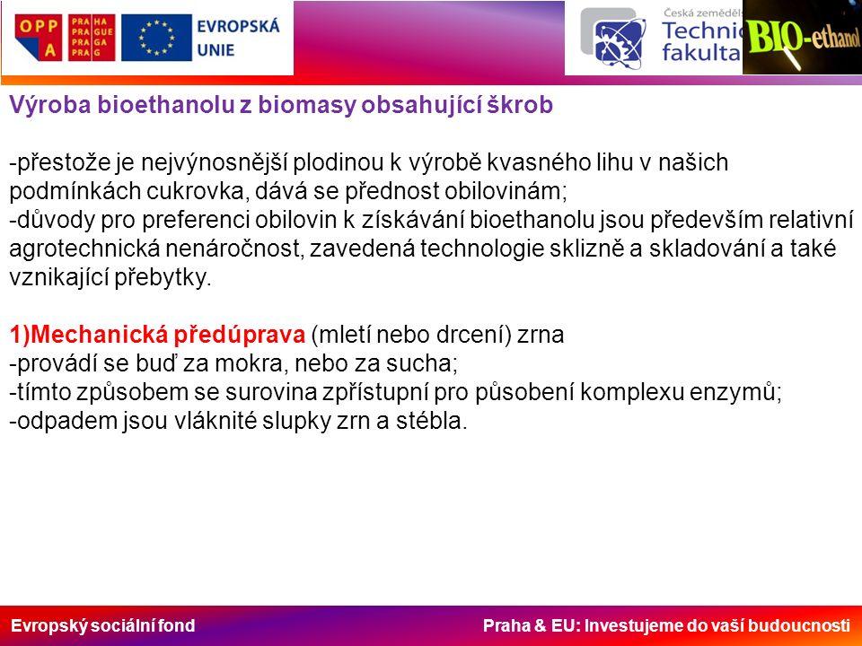 Evropský sociální fond Praha & EU: Investujeme do vaší budoucnosti Plodiny na výrobu bioethanolu a jejich výtěžnost