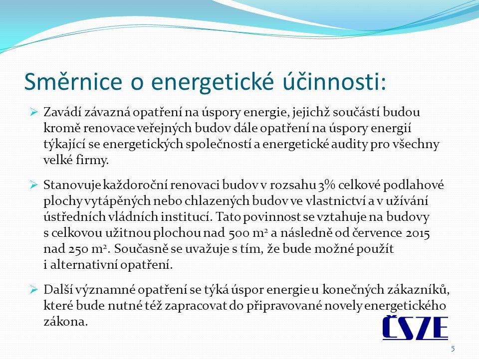 Směrnice o energetické účinnosti:  Zavádí závazná opatření na úspory energie, jejichž součástí budou kromě renovace veřejných budov dále opatření na úspory energií týkající se energetických společností a energetické audity pro všechny velké firmy.