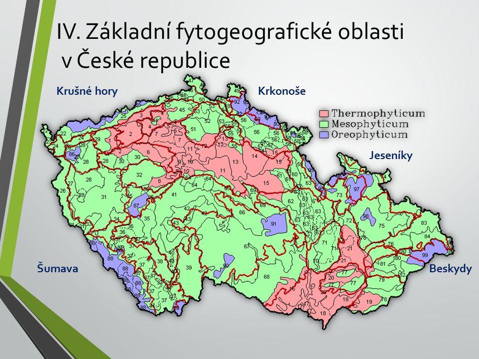 IV. Základní fytogeografické oblasti v České republice Krkonoše Jeseníky Beskydy Krušné hory Šumava