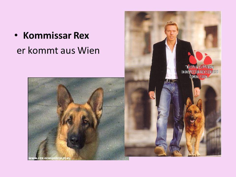 Kommissar Rex er kommt aus Wien