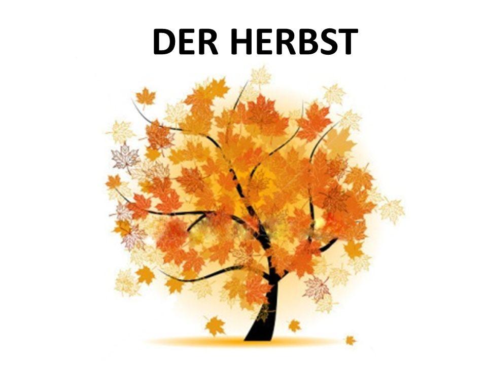 Die Herbstmonate der September - am 23. September beginnt der Herbst der Oktober der November