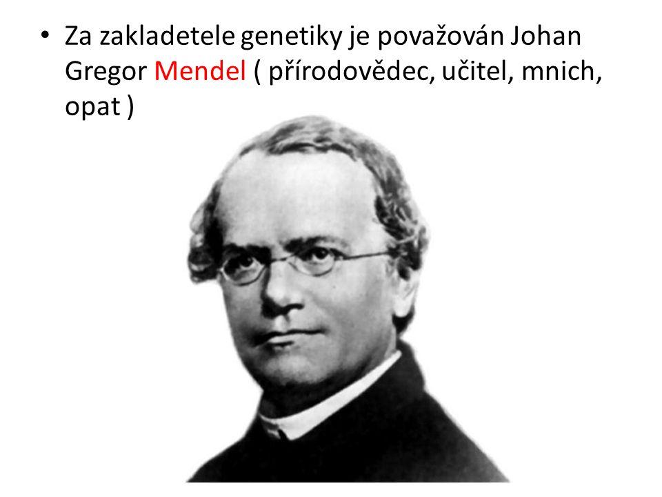 Za zakladetele genetiky je považován Johan Gregor Mendel ( přírodovědec, učitel, mnich, opat )
