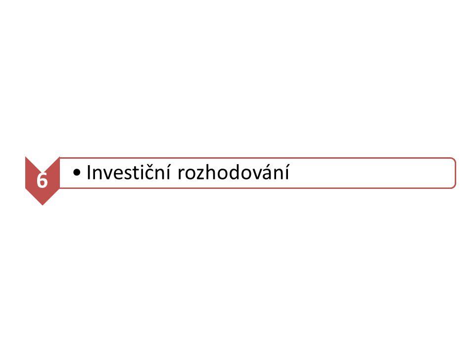 6 Investiční rozhodování