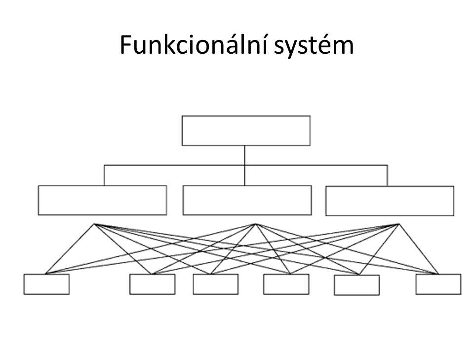 Funkcionální systém