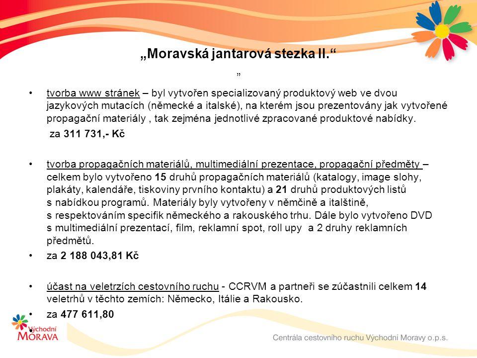 """""""Moravská jantarová stezka II. """" tvorba www stránek – byl vytvořen specializovaný produktový web ve dvou jazykových mutacích (německé a italské), na kterém jsou prezentovány jak vytvořené propagační materiály, tak zejména jednotlivé zpracované produktové nabídky."""
