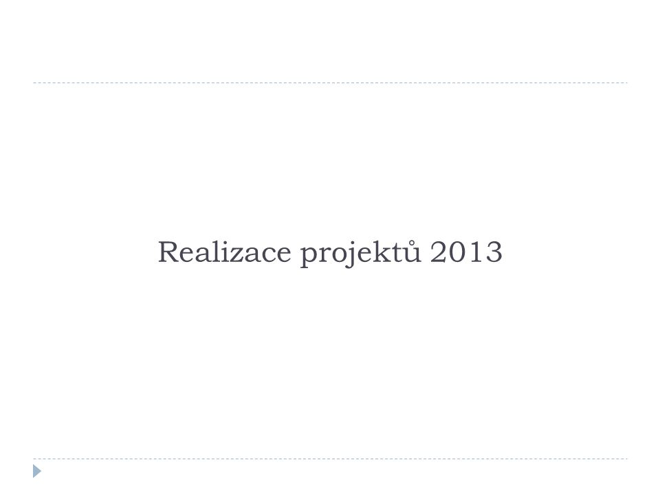 Realizace projektů 2013