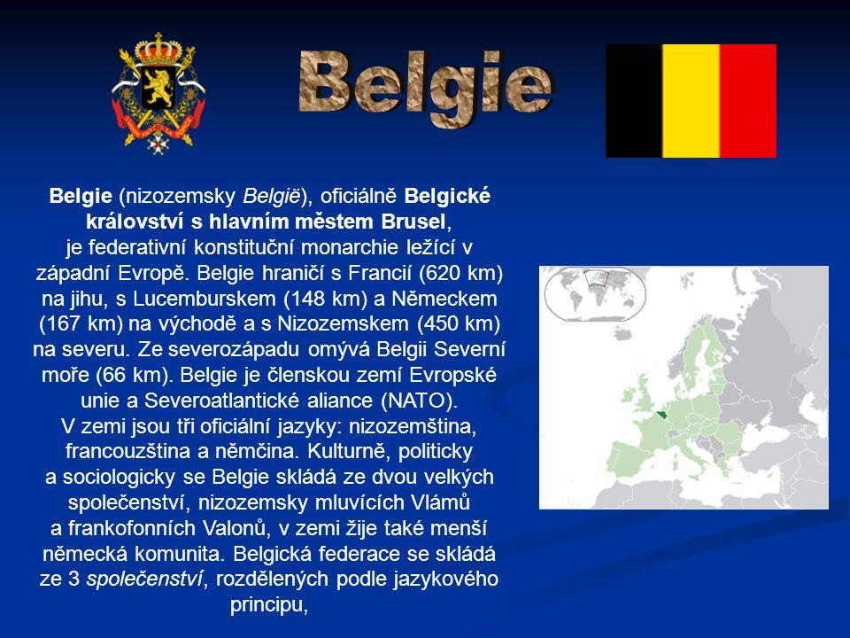 Belgie (nizozemsky België), oficiálně Belgické království s hlavním městem Brusel, je federativní konstituční monarchie ležící v západní Evropě.