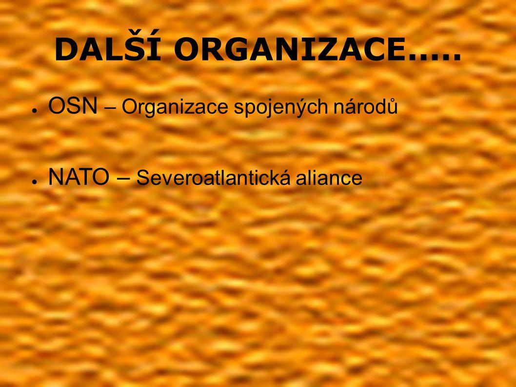DALŠÍ ORGANIZACE..... ● OSN – Organizace spojených národů ● NATO – Severoatlantická aliance