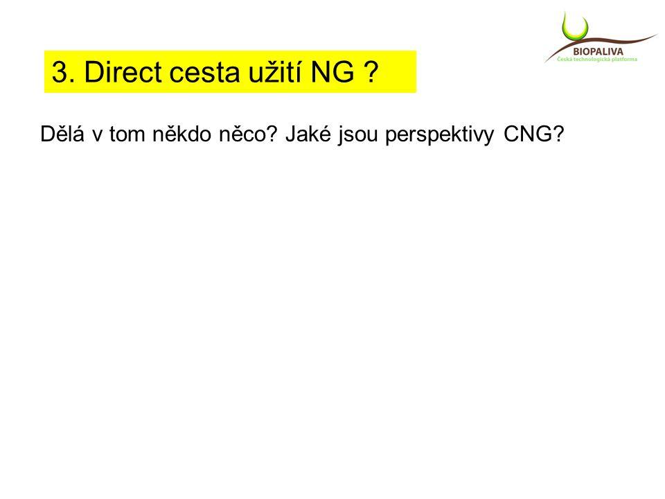 Dělá v tom někdo něco Jaké jsou perspektivy CNG 3. Direct cesta užití NG