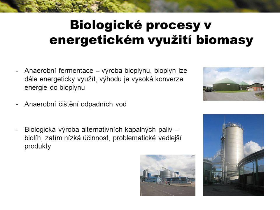 Nějaký zbytek bioodpad Biologické procesy v energetickém využití biomasy -Anaerobní fermentace – výroba bioplynu, bioplyn lze dále energeticky využít, výhodu je vysoká konverze energie do bioplynu -Anaerobní čištění odpadních vod -Biologická výroba alternativních kapalných paliv – biolíh, zatím nízká účinnost, problematické vedlejší produkty