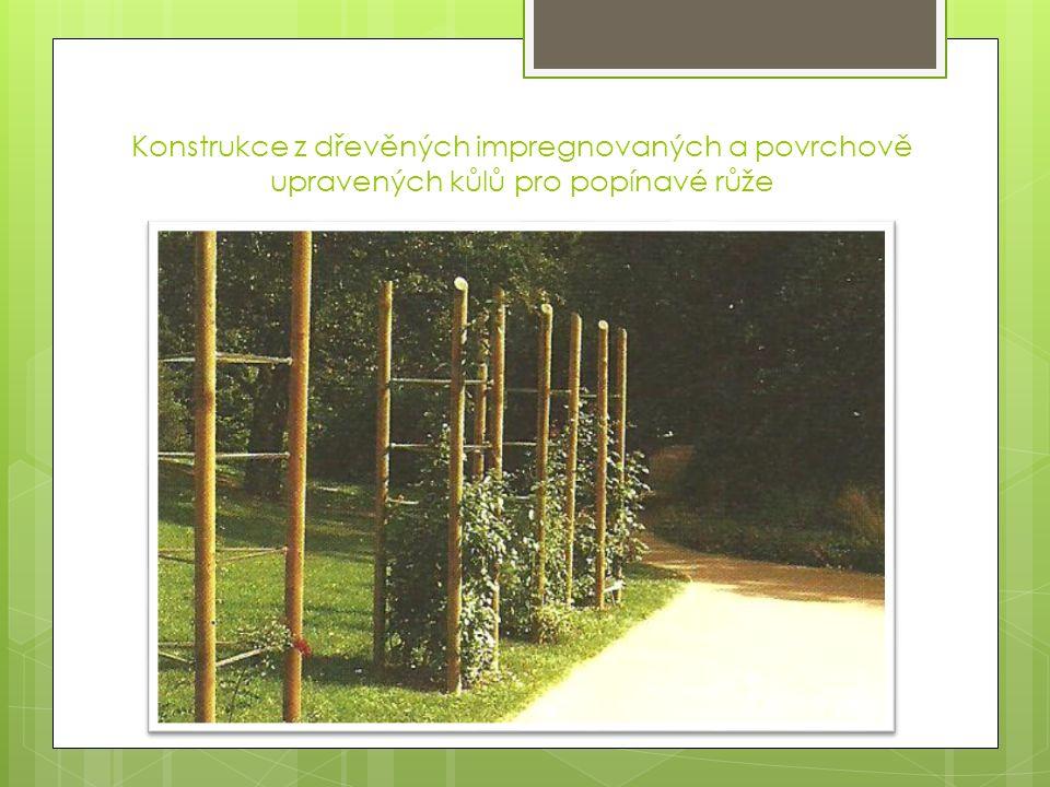Konstrukce z dřevěných impregnovaných a povrchově upravených kůlů pro popínavé růže