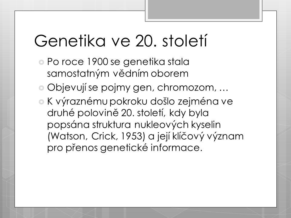 Genetika ve 20.