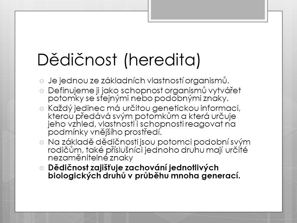 Dědičnost (heredita)  Je jednou ze základních vlastností organismů.