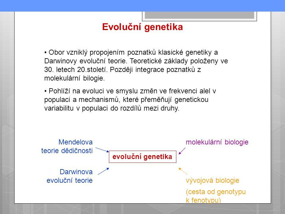 Evoluční genetika Obor vzniklý propojením poznatků klasické genetiky a Darwinovy evoluční teorie.