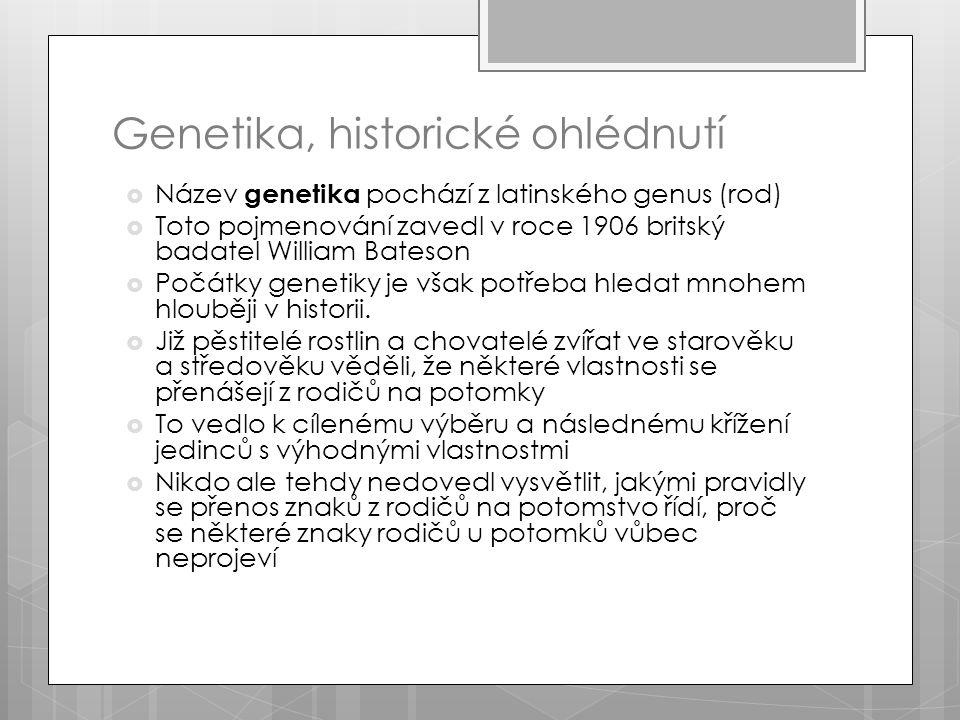 Genetika, historické ohlédnutí  Název genetika pochází z latinského genus (rod)  Toto pojmenování zavedl v roce 1906 britský badatel William Bateson  Počátky genetiky je však potřeba hledat mnohem hlouběji v historii.