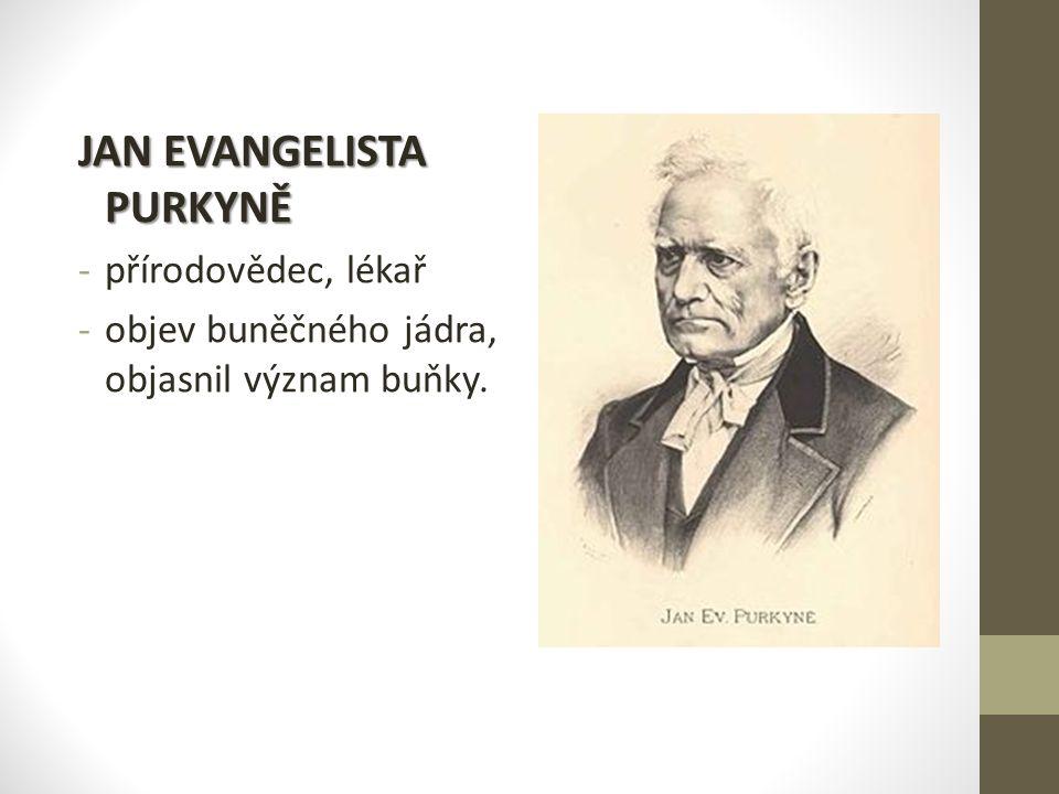 JAN EVANGELISTA PURKYNĚ -p-přírodovědec, lékař -o-objev buněčného jádra, objasnil význam buňky.