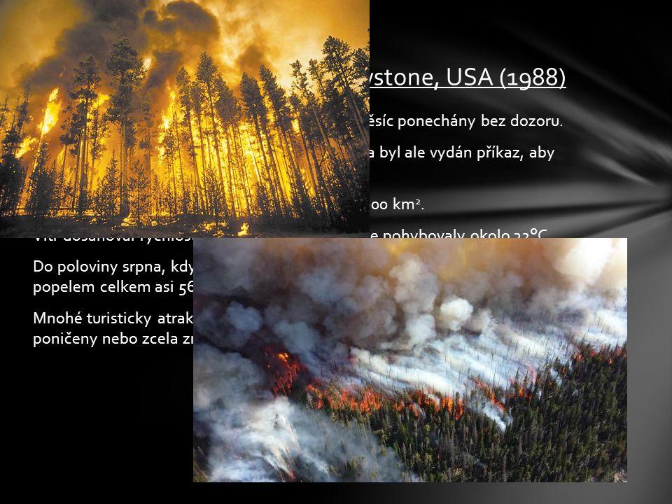 Požáry vzplanuly v červnu a nejdříve byly asi měsíc ponechány bez dozoru. V polovině července, kdy shořelo asi 35 km 2 lesa byl ale vydán příkaz, aby