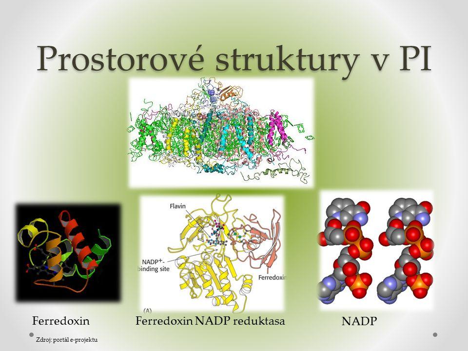 Prostorové struktury v PI FerredoxinFerredoxin NADP reduktasa NADP Zdroj: portál e-projektu