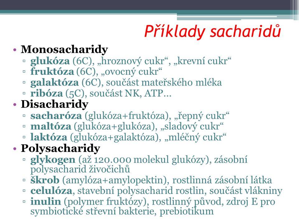 """Příklady sacharidů Monosacharidy ▫glukóza (6C), """"hroznový cukr , """"krevní cukr ▫fruktóza (6C), """"ovocný cukr ▫galaktóza (6C), součást mateřského mléka ▫ribóza (5C), součást NK, ATP..."""