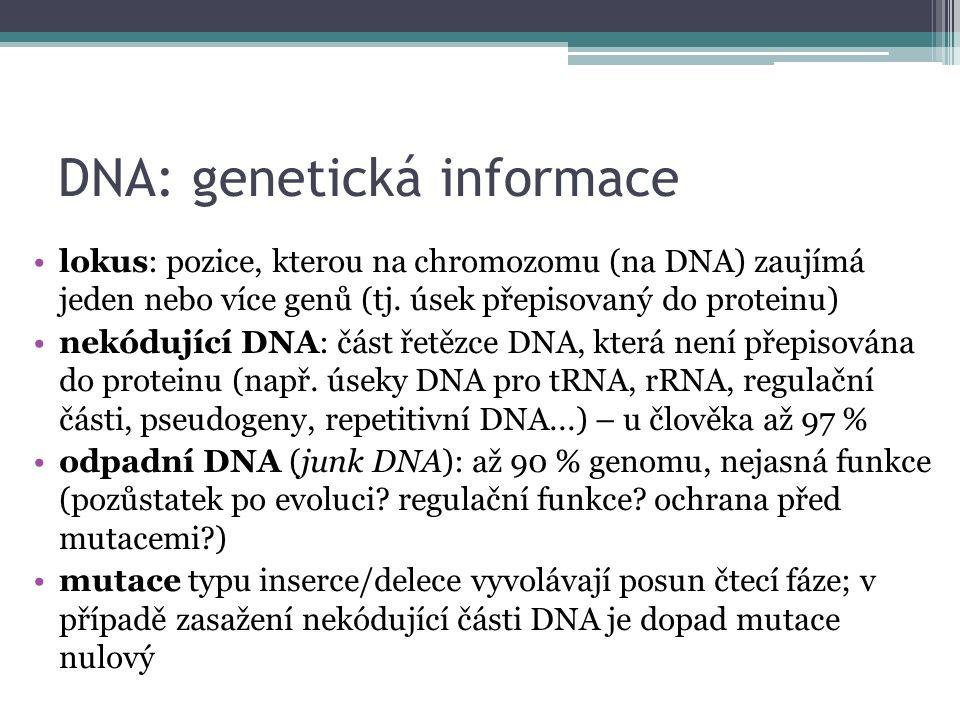 DNA: genetická informace lokus: pozice, kterou na chromozomu (na DNA) zaujímá jeden nebo více genů (tj.