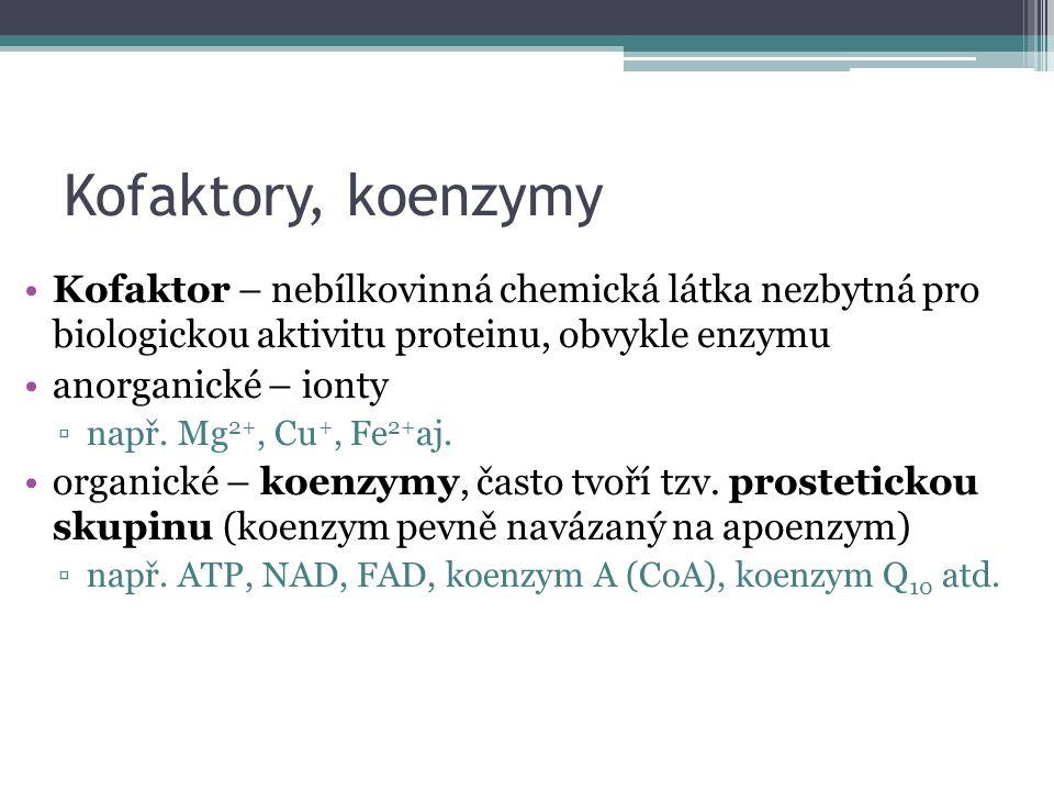 Kofaktory, koenzymy Kofaktor – nebílkovinná chemická látka nezbytná pro biologickou aktivitu proteinu, obvykle enzymu anorganické – ionty ▫např.