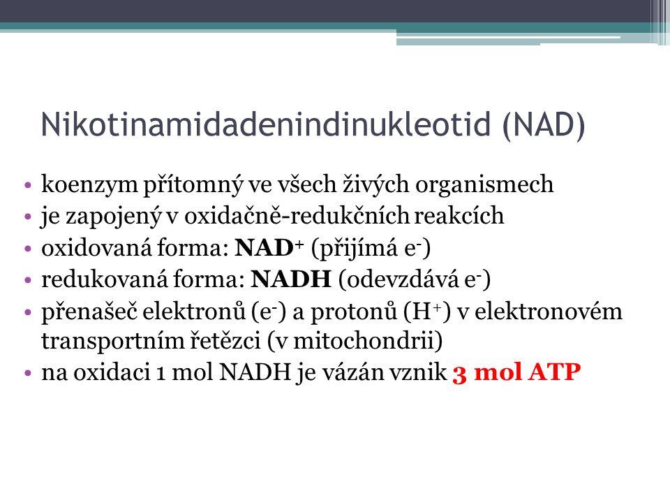 Nikotinamidadenindinukleotid (NAD) koenzym přítomný ve všech živých organismech je zapojený v oxidačně-redukčních reakcích oxidovaná forma: NAD + (přijímá e - ) redukovaná forma: NADH (odevzdává e - ) přenašeč elektronů (e - ) a protonů (H + ) v elektronovém transportním řetězci (v mitochondrii) na oxidaci 1 mol NADH je vázán vznik 3 mol ATP