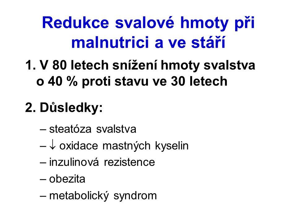 Redukce svalové hmoty při malnutrici a ve stáří 1. V 80 letech snížení hmoty svalstva o 40 % proti stavu ve 30 letech 2. Důsledky: –steatóza svalstva