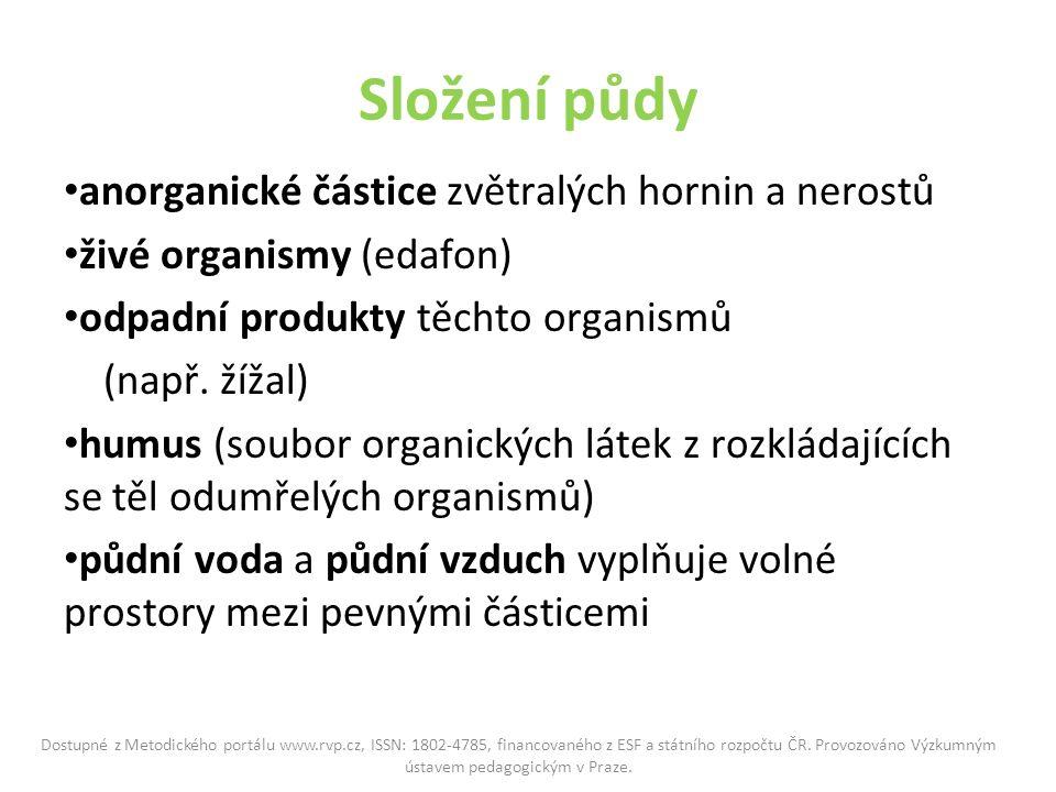 Složení půdy anorganické částice zvětralých hornin a nerostů živé organismy (edafon) odpadní produkty těchto organismů (např.