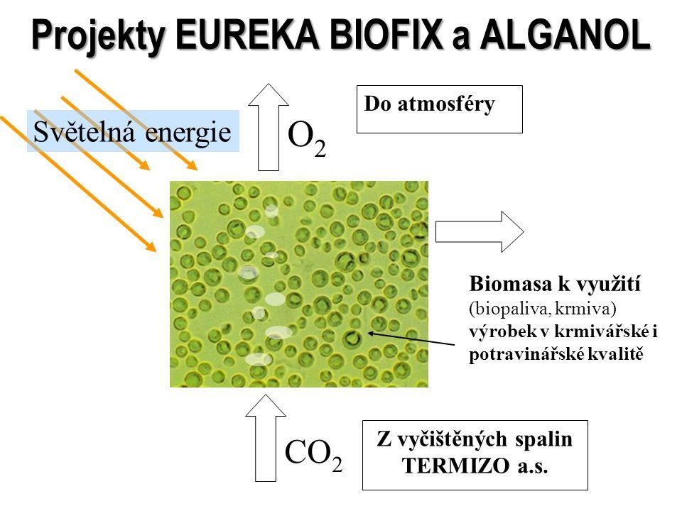 Projekty EUREKA BIOFIX a ALGANOL CO 2 O2O2 Biomasa k využití (biopaliva, krmiva) výrobek v krmivářské i potravinářské kvalitě Světelná energie Do atmo