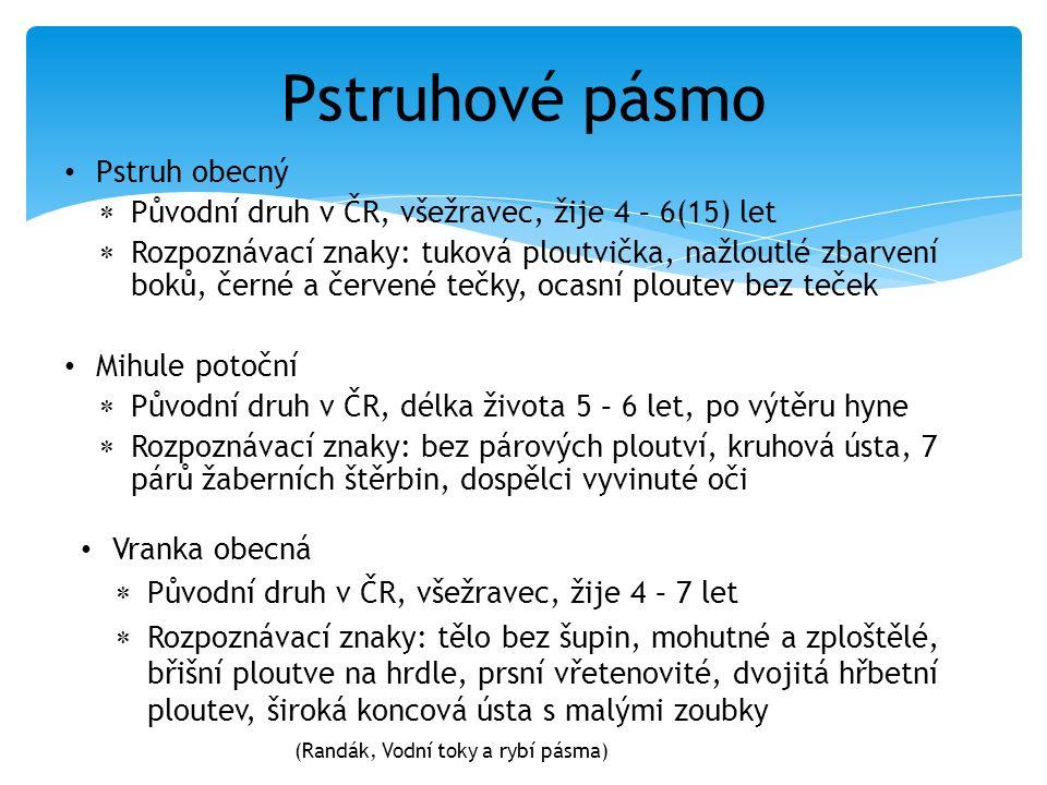 Pstruhové pásmo Pstruh obecný  Původní druh v ČR, všežravec, žije 4 – 6(15) let  Rozpoznávací znaky: tuková ploutvička, nažloutlé zbarvení boků, čer