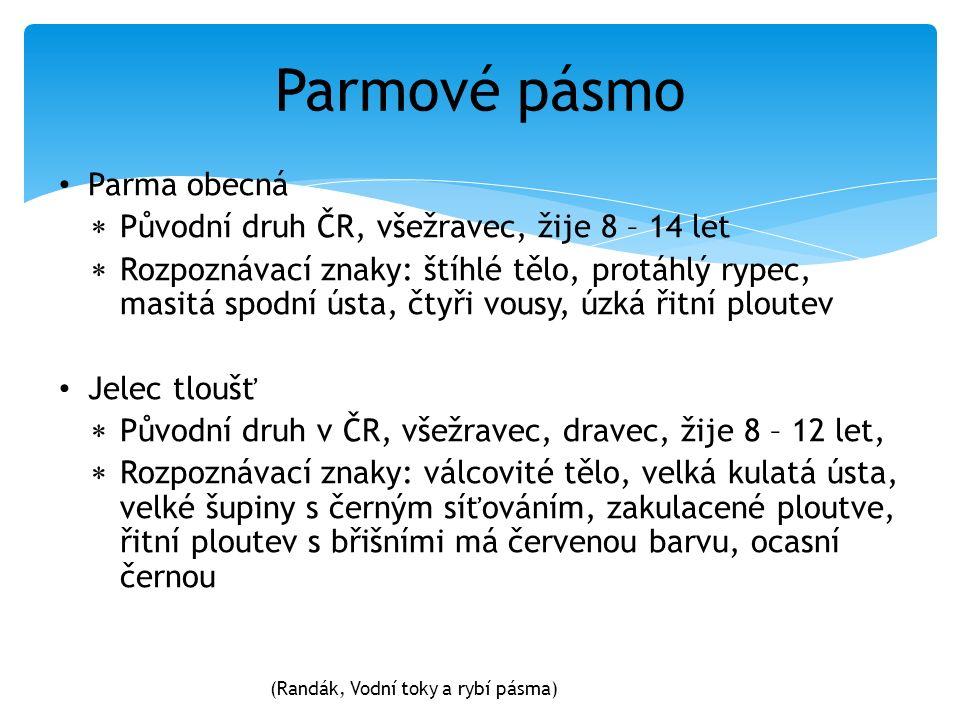Parma obecná  Původní druh ČR, všežravec, žije 8 – 14 let  Rozpoznávací znaky: štíhlé tělo, protáhlý rypec, masitá spodní ústa, čtyři vousy, úzká ři
