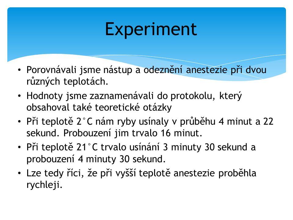 Experiment Porovnávali jsme nástup a odeznění anestezie při dvou různých teplotách. Hodnoty jsme zaznamenávali do protokolu, který obsahoval také teor