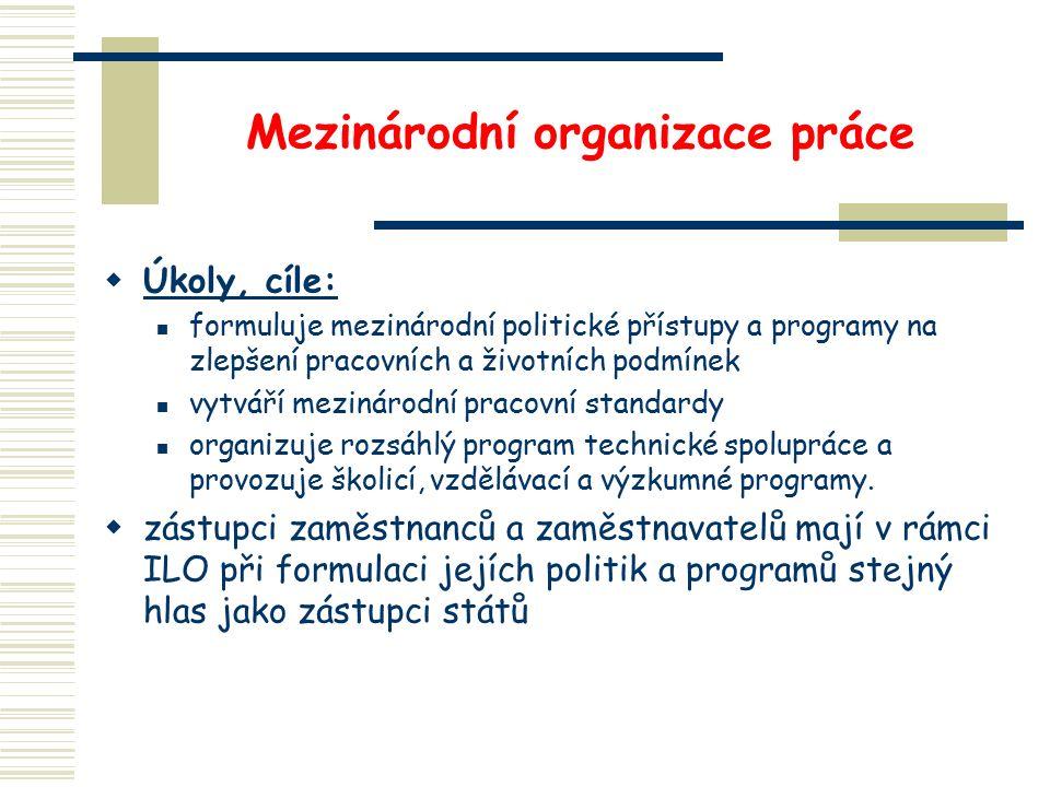 Mezinárodní organizace práce  Úkoly, cíle: formuluje mezinárodní politické přístupy a programy na zlepšení pracovních a životních podmínek vytváří mezinárodní pracovní standardy organizuje rozsáhlý program technické spolupráce a provozuje školicí, vzdělávací a výzkumné programy.