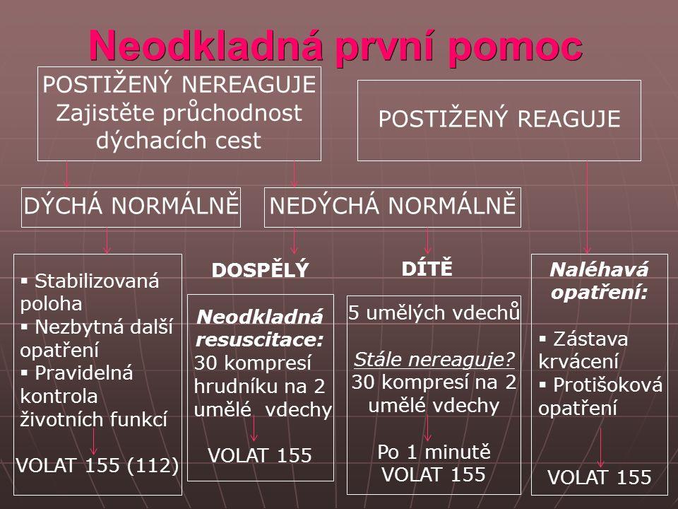 Zdroje Rathauský, Z.Co dělat…Kapesní průvodce krizovými situacemi doma i v zahraničí.