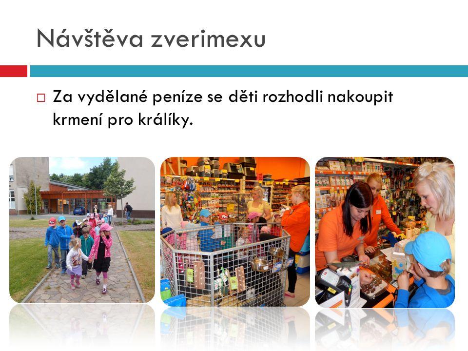 Návštěva zverimexu  Za vydělané peníze se děti rozhodli nakoupit krmení pro králíky.
