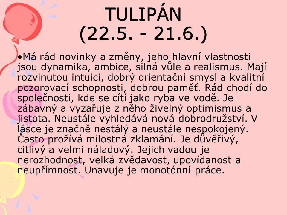 TULIPÁN (22.5.