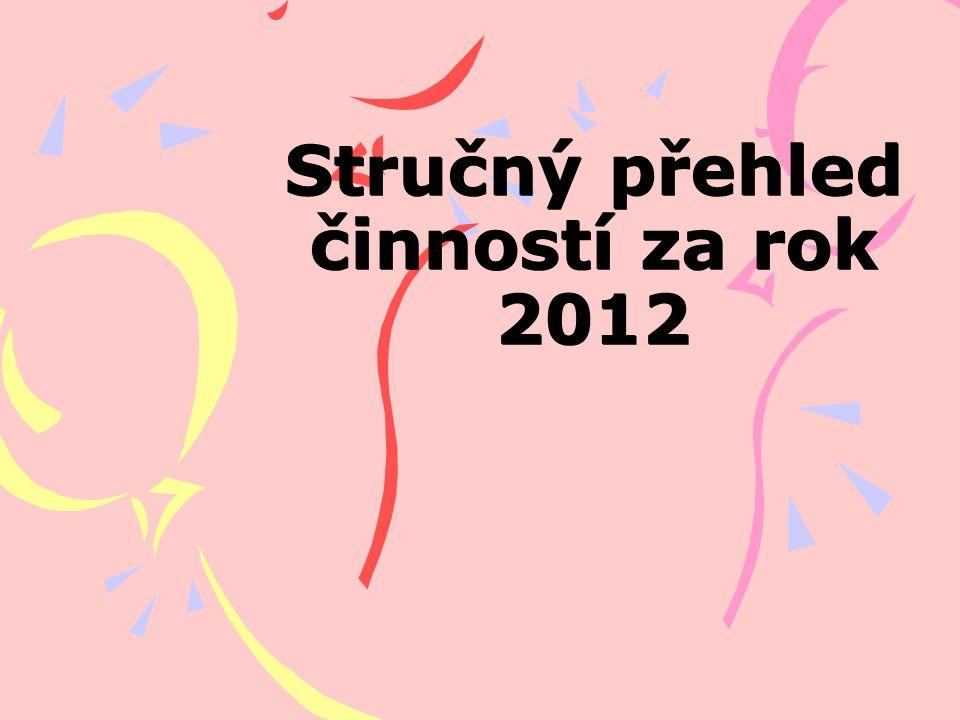 Stručný přehled činností za rok 2012