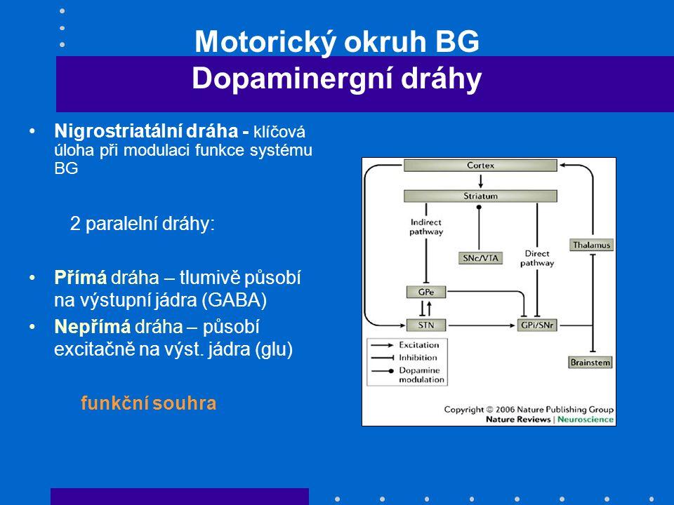 Motorický okruh BG Dopaminergní dráhy Nigrostriatální dráha - klíčová úloha při modulaci funkce systému BG 2 paralelní dráhy: Přímá dráha – tlumivě pů