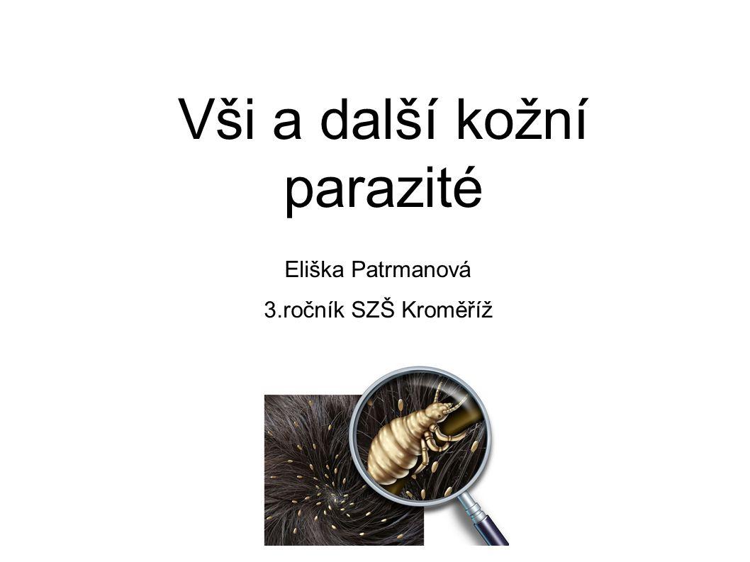 Vši a další kožní parazité Eliška Patrmanová 3.ročník SZŠ Kroměříž
