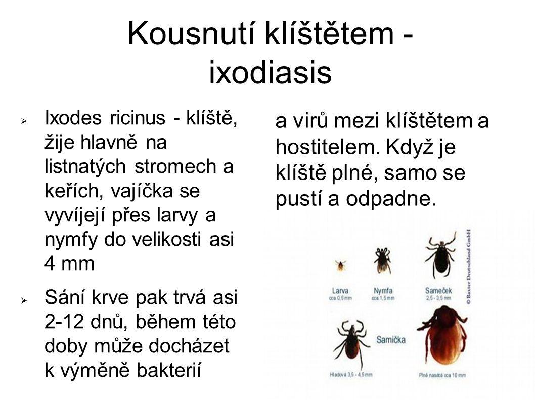 Kousnutí klíštětem - ixodiasis  Ixodes ricinus - klíště, žije hlavně na listnatých stromech a keřích, vajíčka se vyvíjejí přes larvy a nymfy do velikosti asi 4 mm  Sání krve pak trvá asi 2-12 dnů, během této doby může docházet k výměně bakterií a virů mezi klíštětem a hostitelem.